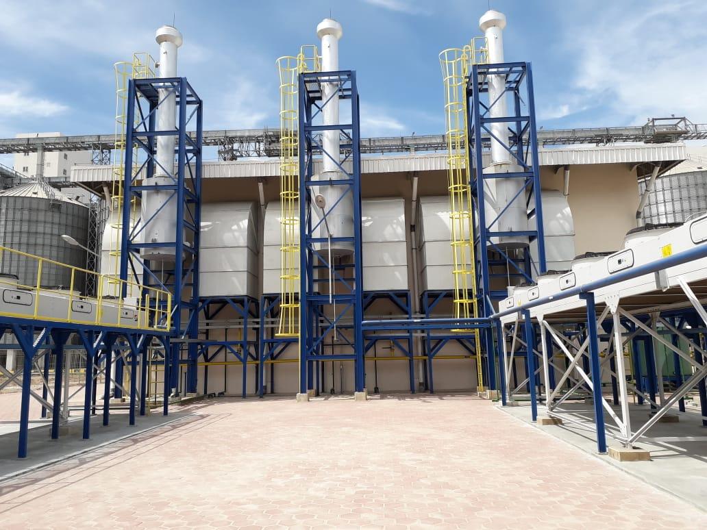 Project gas enginen generator bfm